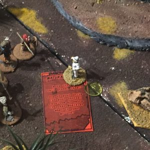 Miniature wargames I played in 2016 - Colonial Wargaming using Triumph & Tragedy