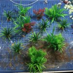 Jungle terrain for wargaming overview