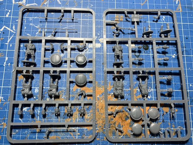 the sprue of the Victrix Macedonian Hypaspists